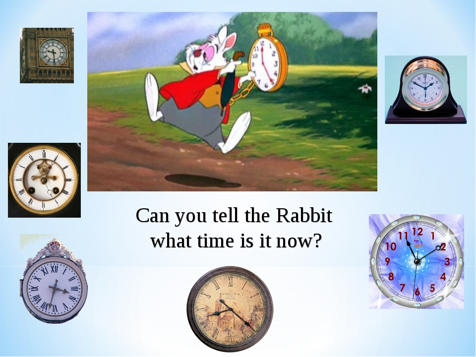 Can you tell the Rabbit what time is it now?