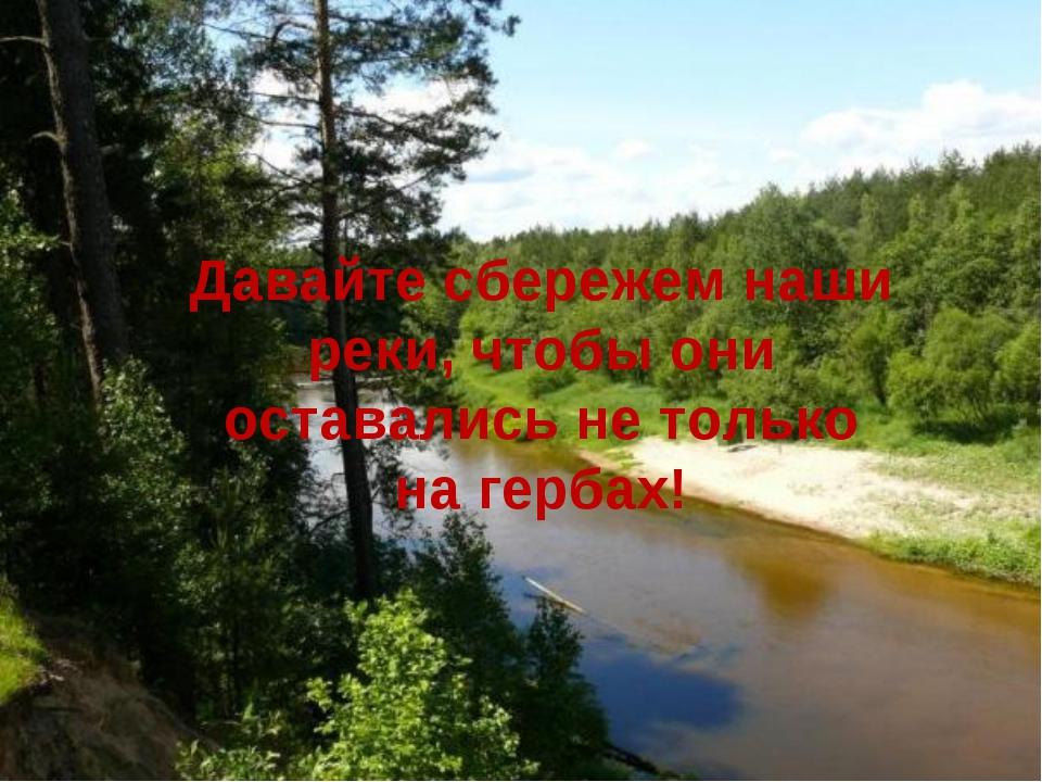 Давайте сбережем наши реки, чтобы они оставались не только на гербах!