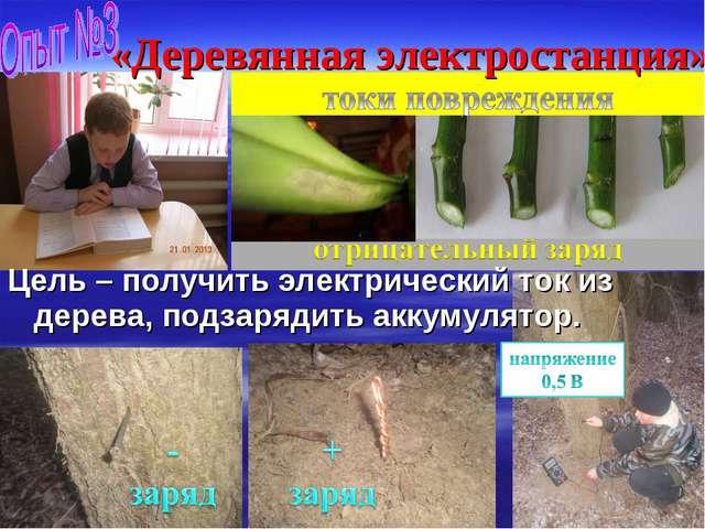 «Деревянная электростанция» Цель – получить электрический ток из дерева, подз...
