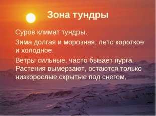 Зона тундры Суров климат тундры. Зима долгая и морозная, лето короткое и холо