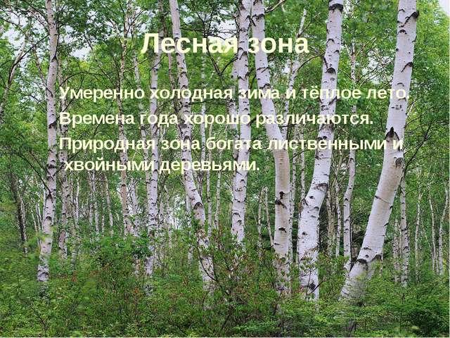 Лесная зона Умеренно холодная зима и тёплое лето. Времена года хорошо различа...