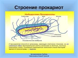 Артамонникова Любовь Николаевна,Новый Уренгой Строение прокариот Артамонников