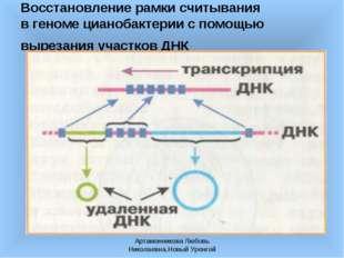 Артамонникова Любовь Николаевна,Новый Уренгой Восстановление рамки считывания