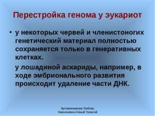 Артамонникова Любовь Николаевна,Новый Уренгой Перестройка генома у эукариот у