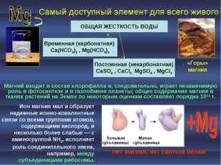 Самый доступный элемент для всего живого ОБЩАЯ ЖЕСТКОСТЬ ВОДЫ Временная (карб