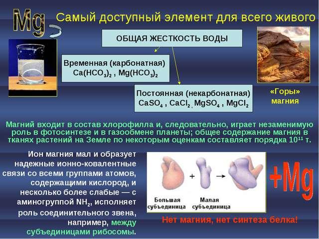 Самый доступный элемент для всего живого ОБЩАЯ ЖЕСТКОСТЬ ВОДЫ Временная (карб...