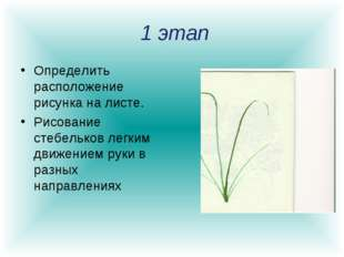 1 этап Определить расположение рисунка на листе. Рисование стебельков легким