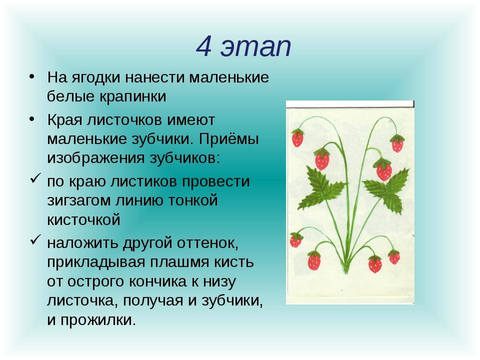 4 этап На ягодки нанести маленькие белые крапинки Края листочков имеют мален...