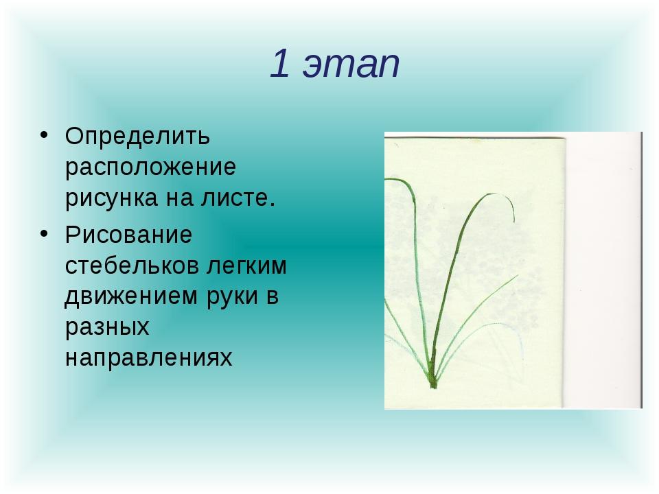 1 этап Определить расположение рисунка на листе. Рисование стебельков легким...