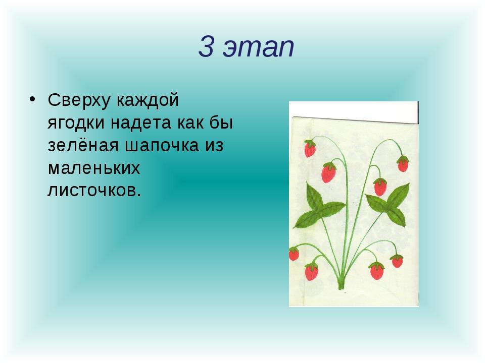 3 этап Сверху каждой ягодки надета как бы зелёная шапочка из маленьких листо...