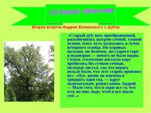 Вторая встреча Андрея Болконского с дубом «Старый дуб, весь преображенный, ра