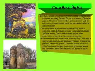 Символ дуба Дуб был у славян олицетвоpением силы, мощи и в дpевности посвяще