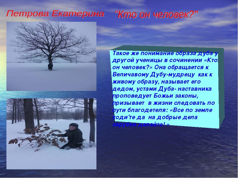 Такое же понимание образа дуба у другой ученицы в сочинении «Кто он человек?»...