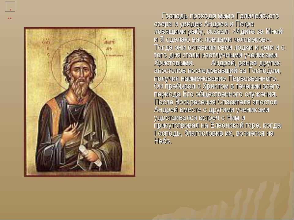 Господь проходя мимо Галилейского озера и увидев Андрея и Петра ловящими рыб...