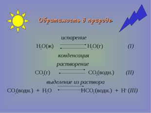 Обратимость в природе. испарение H2O(ж) H2O(г) (I) конденсация растворение CO