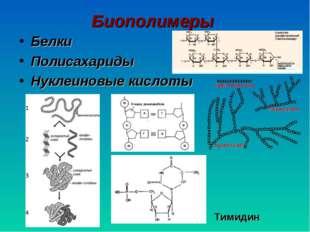 Биополимеры Белки Полисахариды Нуклеиновые кислоты Тимидин