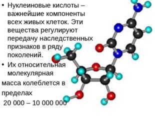 Нуклеиновые кислоты – важнейшие компоненты всех живых клеток. Эти вещества ре
