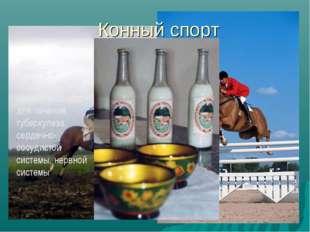 Конный спорт КУМЫС – сквашенное молоко кобылиц – для лечения туберкулеза, сер