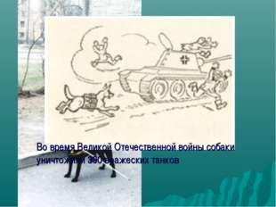 Во время Великой Отечественной войны собаки уничтожили 300 вражеских танков