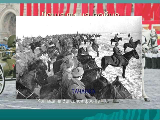 Лошади на войне Конница на Западном фронте ТАЧАНКА
