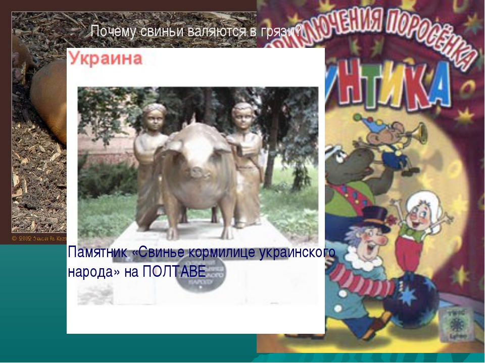 Почему свиньи валяются в грязи? Памятник «Свинье кормилице украинского народа...