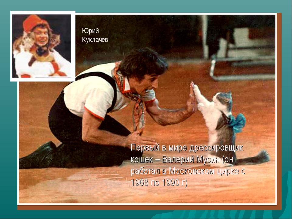 Первый в мире дрессировщик кошек – Валерий Мусин (он работал в Московском цир...