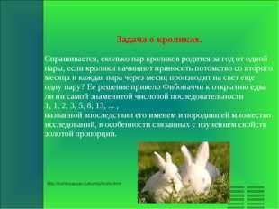 Задача о кроликах. Спрашивается, сколько пар кроликов родится за год от одной