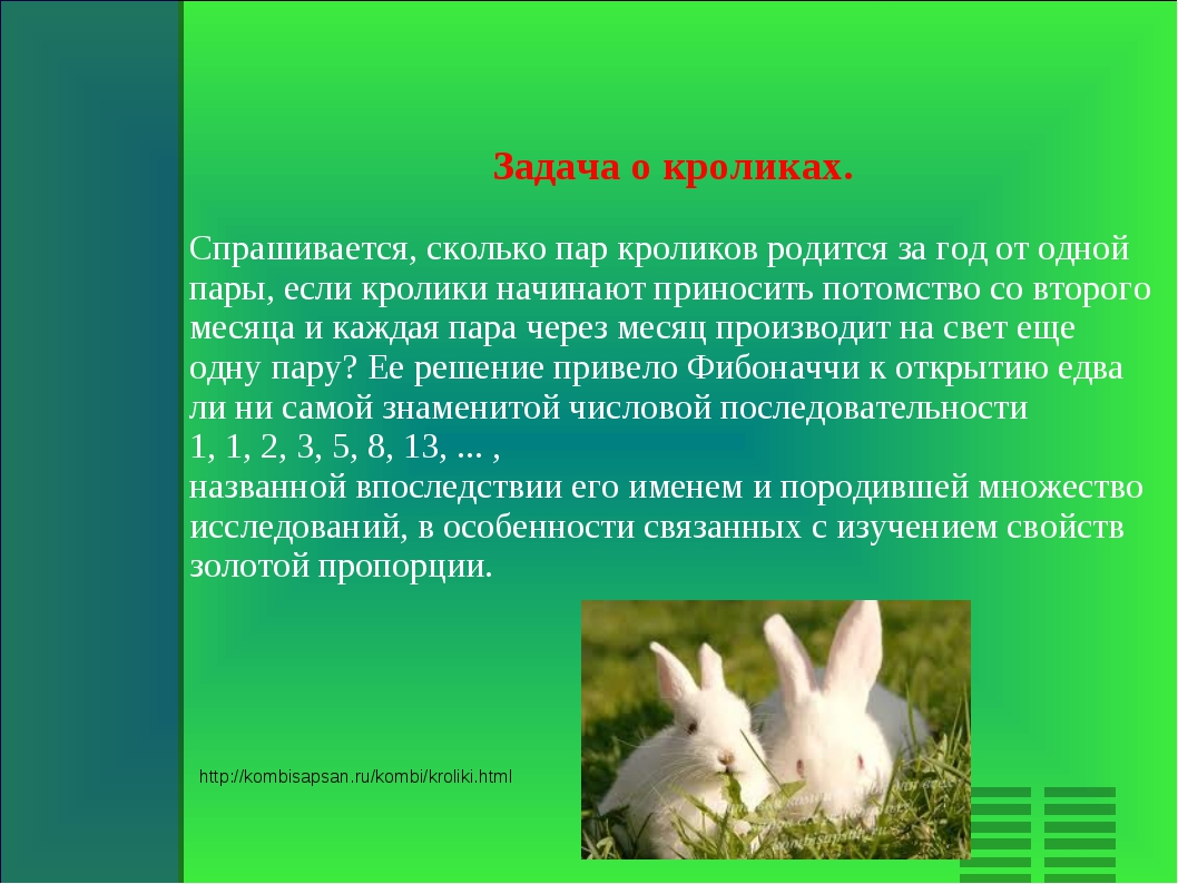 Задача о кроликах. Спрашивается, сколько пар кроликов родится за год от одной...