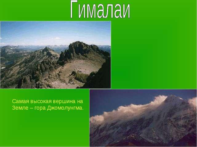 Самая высокая вершина на Земле – гора Джомолунгма.