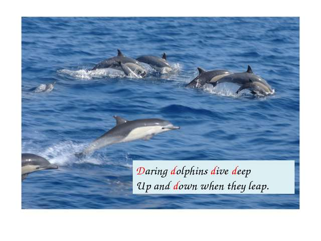 Daring dolphins dive deep Up and down when they leap.