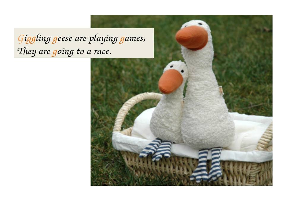 Giggling geese are playing games, They are going to a race.