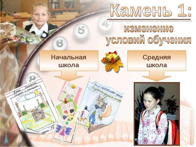 Начальная школа Средняя школа