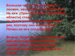 Большая часть Урала покрыта лесами, хвойными и смешанными. На юге (Оренбургск