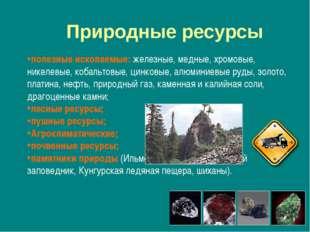 полезные ископаемые: железные, медные, хромовые, никелевые, кобальтовые, цинк