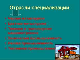 Отрасли специализации: Черная металлургия Цветная металлургия Тяжелое и транс