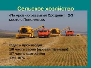 Сельское хозяйство По уровню развития С/Х делит 2-3 место с Поволжьем. Здесь