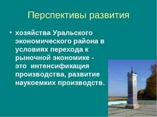 Перспективы развития хозяйства Уральского экономического района в условиях пе
