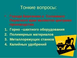 Тонкие вопросы: Города Березники и Соликамск Пермского края являются центрами