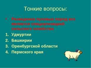 Тонкие вопросы: Разведение пуховых пород коз является специализацией сельског