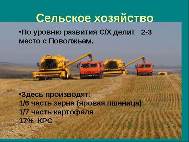Сельское хозяйство По уровню развития С/Х делит 2-3 место с Поволжьем. Здесь...