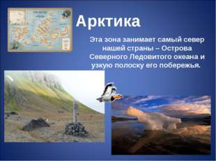 Арктика Эта зона занимает самый север нашей страны – Острова Северного Ледови