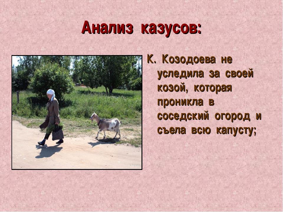 Анализ казусов: К. Козодоева не уследила за своей козой, которая проникла в с...