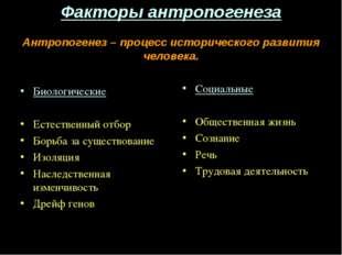 Факторы антропогенеза Антропогенез – процесс исторического развития человека.