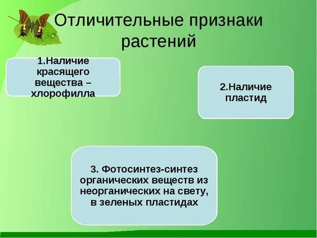 Отличительные признаки растений 1.Наличие красящего вещества – хлорофилла 2.Н...