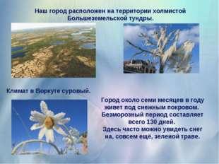 Наш город расположен на территории холмистой Большеземельской тундры. Климат