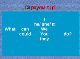 Сұраулы түрі What can could I he/ she/ It We You they  do?