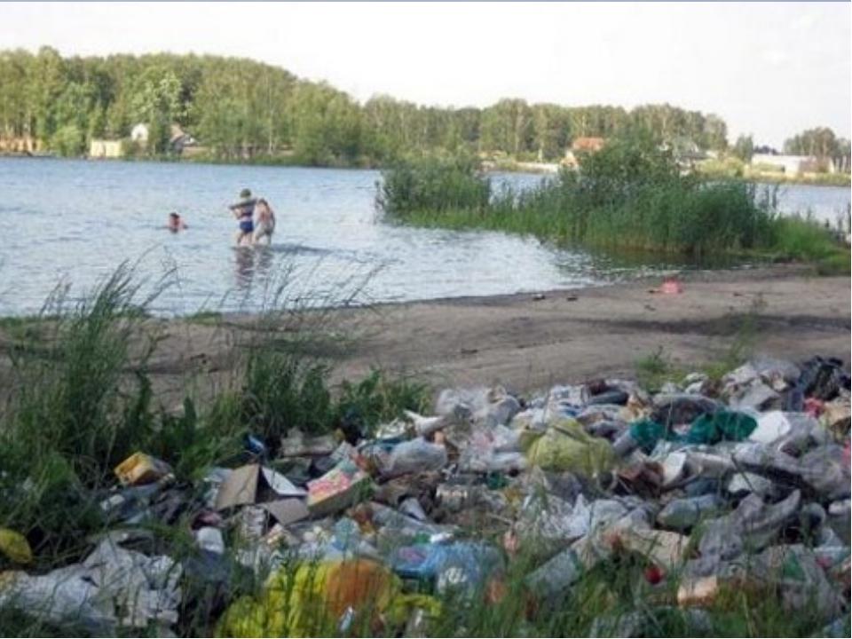 Какой вред приносит мусор природе?