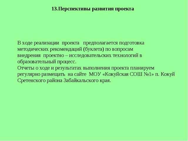 13.Перспективы развития проекта   В ходе реализациипроекта предполагает...