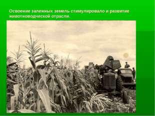 Освоение залежных земель стимулировало и развитие животноводческой отрасли.