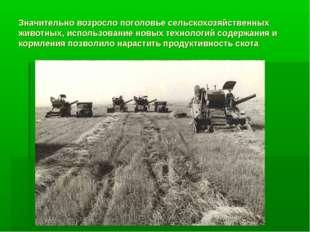 Значительно возросло поголовье сельскохозяйственных животных, использование н
